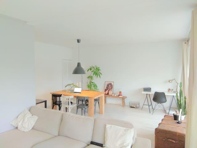 Spacious 2 bedroom appartment close to Vondelpark