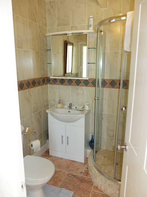 Ensuite shower, toilet and wash basin