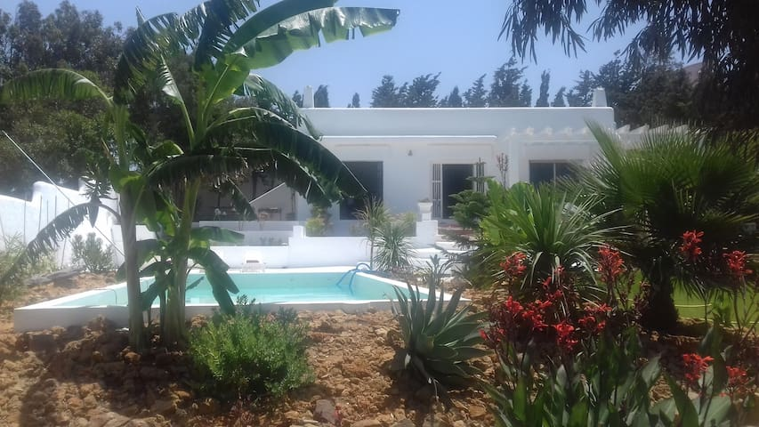 Suite avec piscine et jardin suite de invitados en for Suite avec piscine