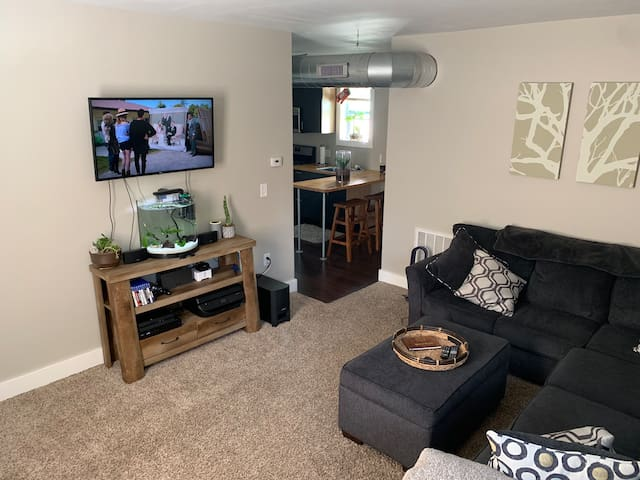 Pet friendly 2 bedroom downtown