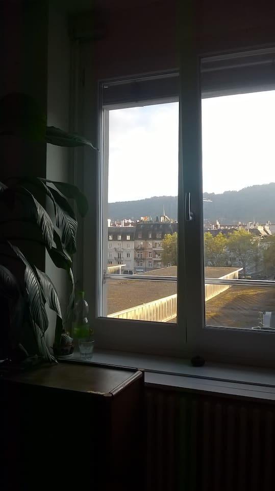 view to Uetliberg