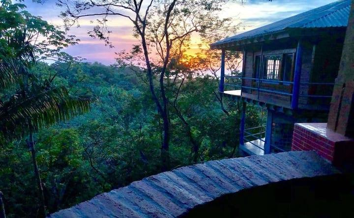 Canopy tree house