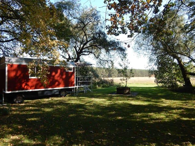 Bauwagen im Schatten alter Bäume - Quitzdorf am See - Camper/RV