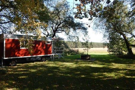 Bauwagen im Schatten alter Bäume - Quitzdorf am See - Husbil/husvagn