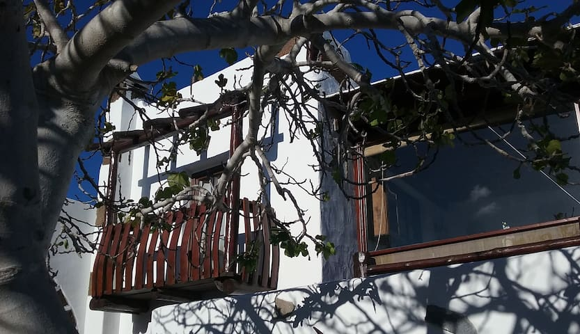 """GOFIO"" Apartament in a panoramic terrace"