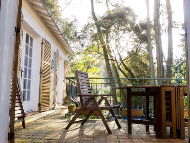 Villa dans les pins - La Baule-Escoublac - House