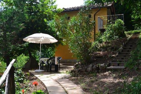 Moscatino - Tuscan holiday home - Villa Basilica