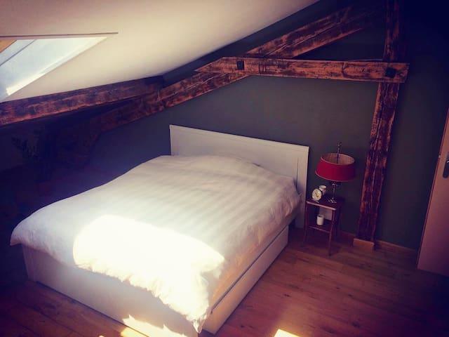 Bedroom in a Duplex in the center of Geneva
