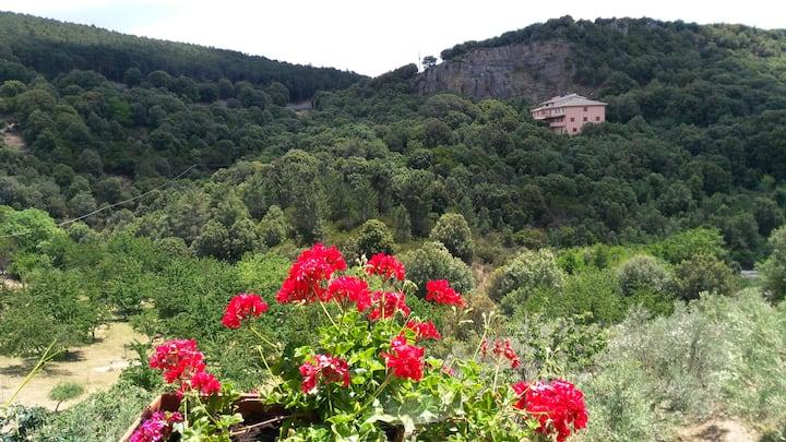 Stellaria, casa romantica con vista sulla montagna