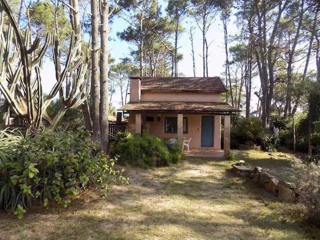 Casa en La Paloma, Rocha. Naturaleza y Arte