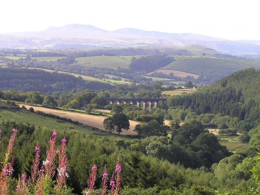 The Bran valley towards the farm