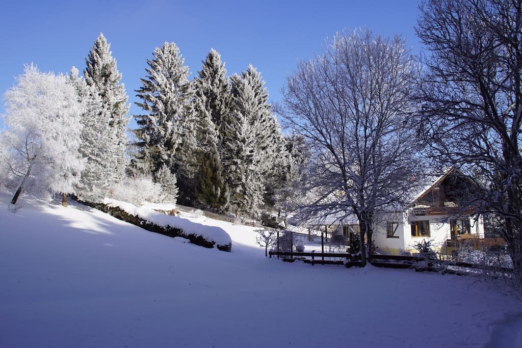 Winteridylle in ruhiger Umgebung