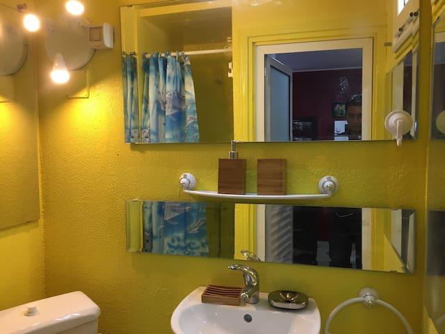 Salle d'eau et douche, certes petite mais très fonctionnelle et eclairee