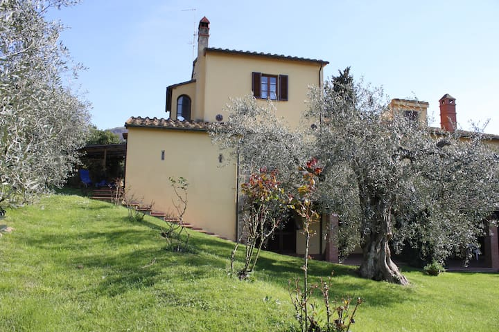 Podere Uliveto - Casa Francesco - Scarlino - Casa