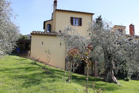 Podere Uliveto - Casa Francesco - Scarlino