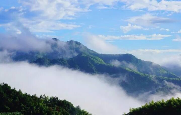 高山观景翠绿竹林清新空气享绿色生态美食住星级客房避暑度假疗养胜地