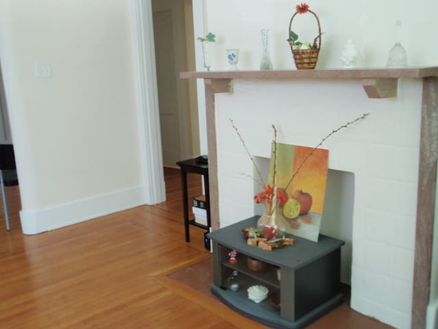Room in Squirrel Hill close to Murray Avenue - Pittsburgh - Hus