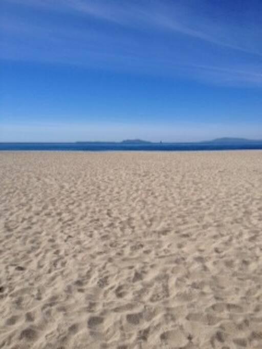 Full Ocean View