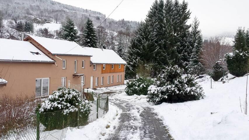 Vosges-Ancien Moulin rénové de 180 m2.