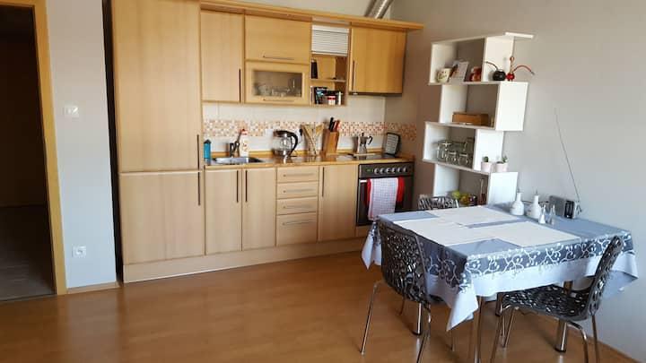 Small apartment in Písek
