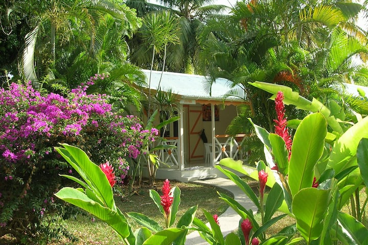 Bungalow  Fleurs des îles