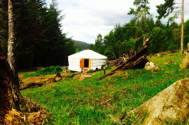 Beautiful yurt in a secluded forest setting - 海蘭(Highland)