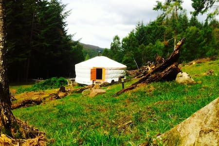 Beautiful yurt in a secluded forest setting - Highland