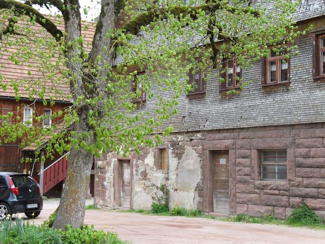 Dorf-Romantik, (Freudenstadt), Dorf-Romantik, ehem. Bauernhaus, 1 Schlafzimmer, max. 2 Personen