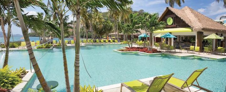 Beautiful 1BR Margaritaville Resort!