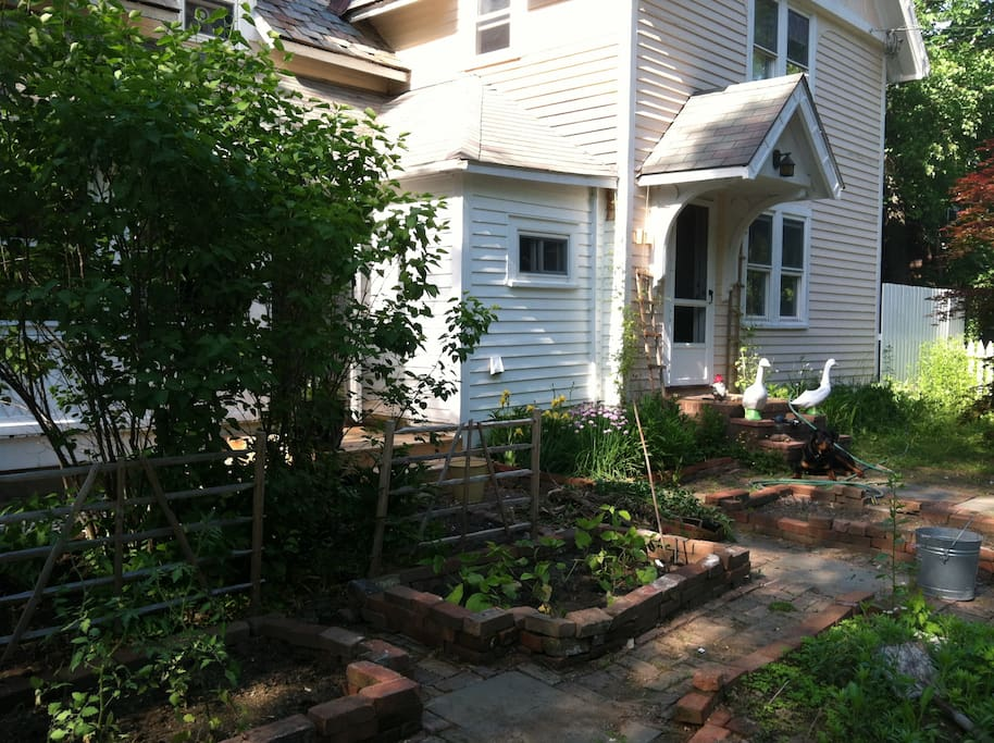 Kitchen Garden in front yard