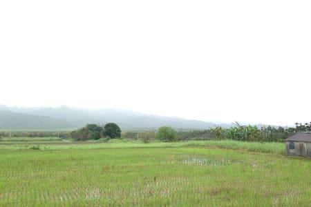 Kitchen farm 民宿 - Guangfu township - Bungalow