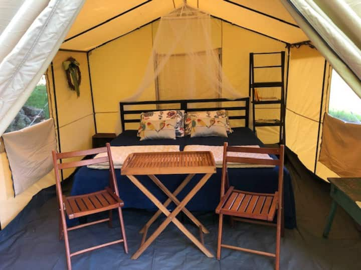 Loafer's Glory Glamping Tent in the Mtns