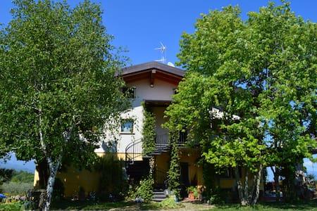 BEST GARDA LAKE VIEW PENTHOUSE - Apartment