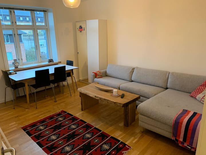 NICE APARTMENT - NEAR SEA AND STATION