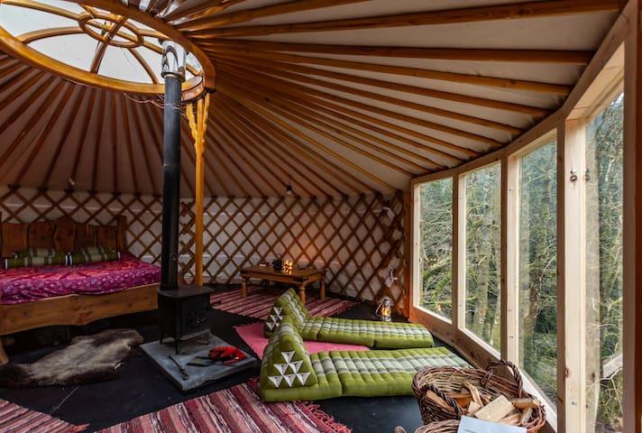 Dyfi forest - Eco Retreats - Meadow yurt