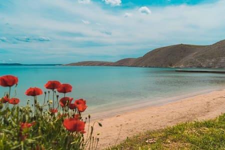 Beach house MELA - Island Pag Vlasici Put magazina