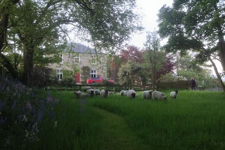 Smallholding Farmhouse with Deer Stalking - Auchnagatt