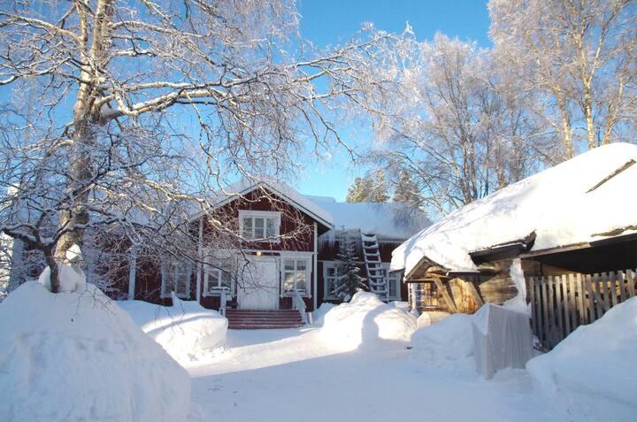 LAURI III - Historical Log House Manor