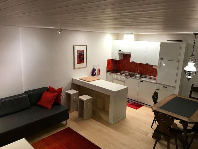 Frisch renovierte Wohnung an perfekter Lage