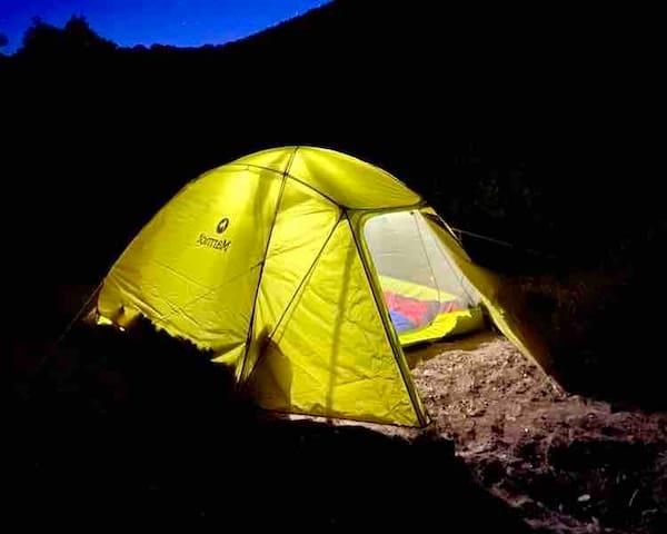 Campe Diem! Hike By Light 402.
