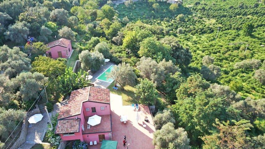 CASA DEGLI ULIVI - Farmhouse - Rocca di Capri Leone - Casa