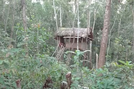 BasicTree house at Thuyhouse Resort - tp. Phú Quốc - Treehouse