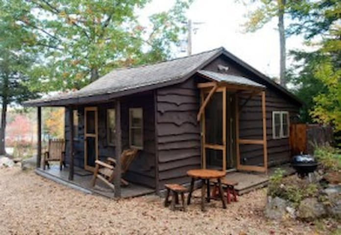 "Cozy ""honeymoon suite""- Green-Private-Woods-Rustic - Pittsfield - Cabin"