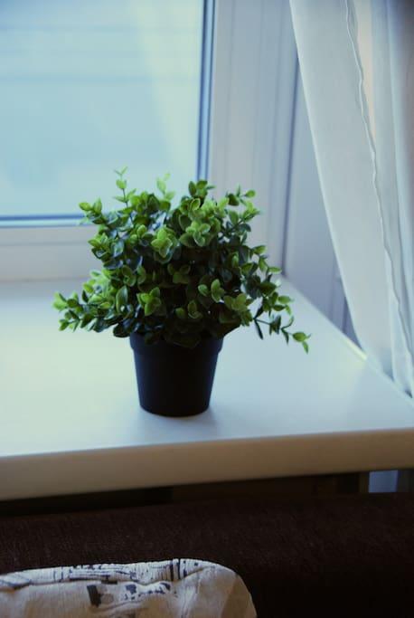 В квартире уютная свежая атмосфера