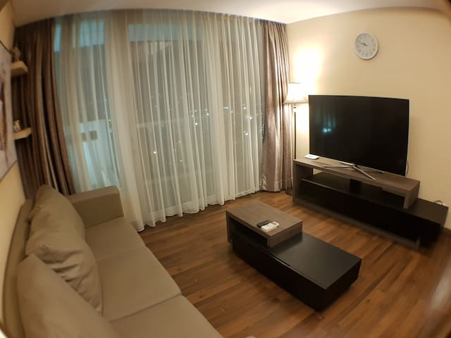 """Living Room with Smart LED TV 55"""" with more than 65 channel such as AXN, Star World, History, HBO, Fox TV,National Geography, Discovery, Fashion TV etc  for your entertainment.Living Room"""