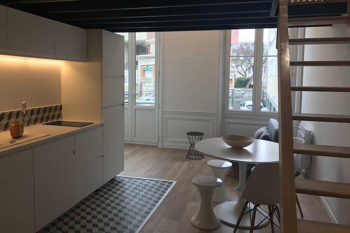 Appartement de caractère dans Hôtel particulier - Reims - Daire