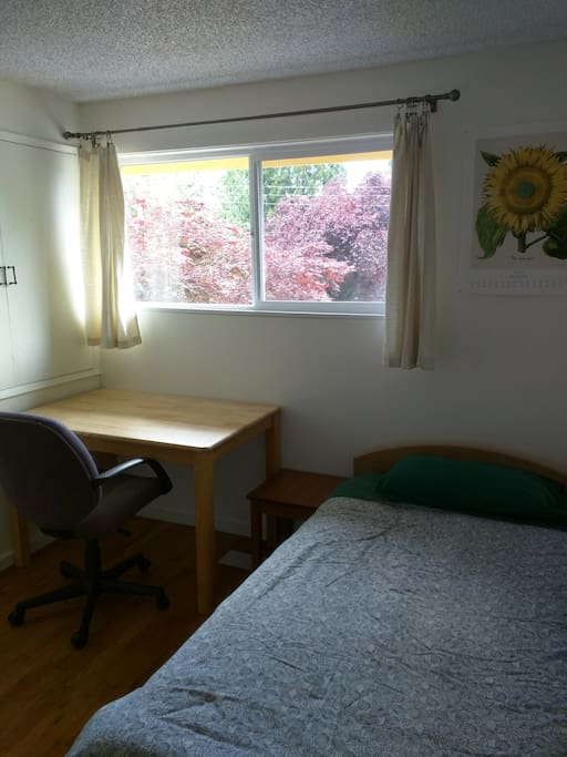 Nice, basic bedroom with single bed, good sized desk, chair & west facing window to quiet street.