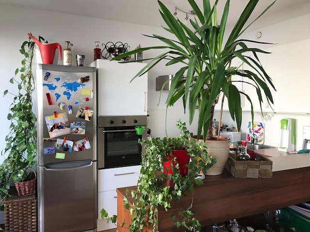 Gemütliche 65m2 Wohnung mit Garten - Scheibbs - Apartament