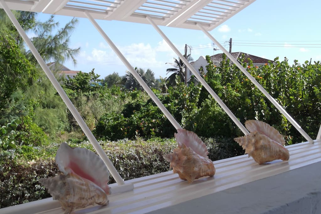 Conch shells enhance view from Seashells verandah