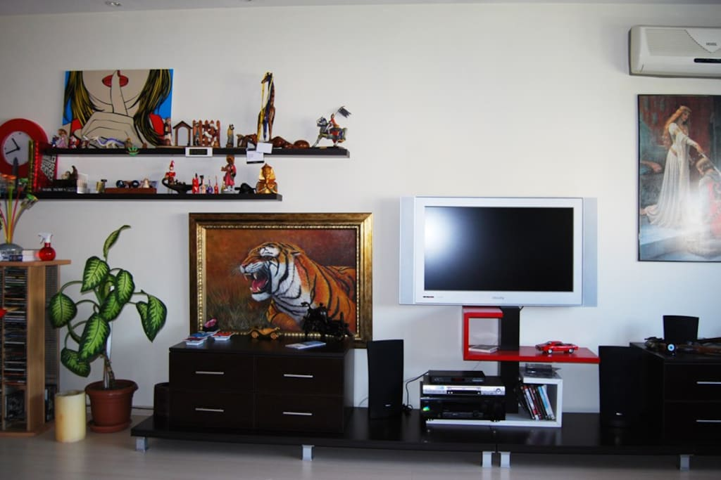 Living Room, AC and Lcd Tv